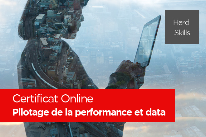 Pilotage de la performance et data